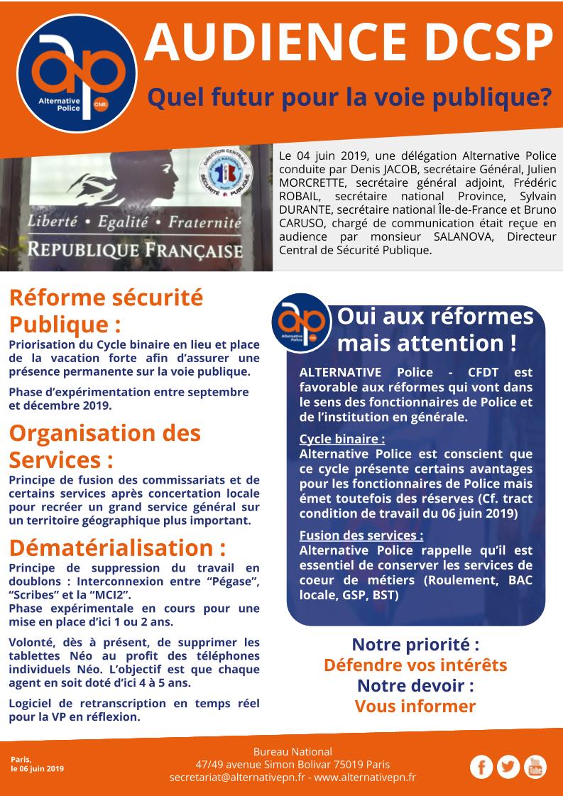AUDIENCE DCSP : quel futur pour la voie publique?